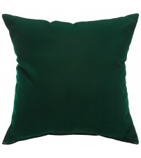 "Sunbrella 18""x18"" Square Throw Pillow - Canvas Forest Green"